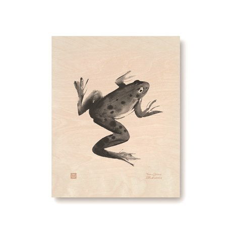 Plywood Poster Frog